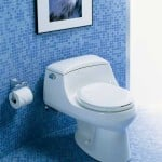 6 Best Expensive Toilets With Oriented Features