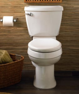 Best Toilet Brands and Reviews